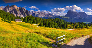 Panorama of the Pizes de Cir ridge and Sassolungo (Langkofel)  Royalty Free Stock Photo