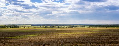 Panorama of a plowed field, rural, Russia, Ural. June Stock Photo