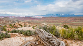 Panorama Point, La Sal Mountains, Arches National Park, UT Stock Photography
