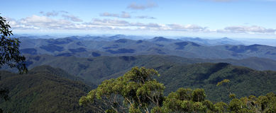 Panorama from point lookout. Looking over the forests and rainforestsof the oxley world heritage area Stock Photo