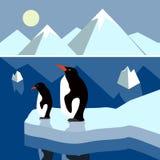 Panorama polaire de paysage Images libres de droits