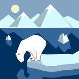 Panorama polar del paisaje Fotografía de archivo libre de regalías