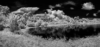 Pond photographed in infrared Stock Image