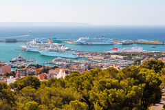 Panorama of the port with cruise liners in Palma de Mallorca. The view from the highest point of the port with cruise liners in Palma de Mallorca in the summer Stock Images