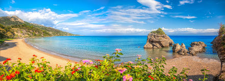 Panorama of Porto Zorro beach against colorful flowers on Zakynthos island, Greece royalty free stock photography