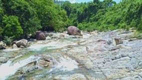 Panorama próximo da antena da corredeira do rio da montanha nos trópicos vídeos de arquivo