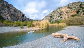 Panorama of Preveli beach at Libyan sea, river and palm forest, southern Crete. Stock Photo