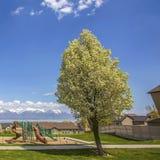 Panorama quadrado do parque e das casas com vista do lago e da montanha sob o céu nebuloso fotografia de stock royalty free