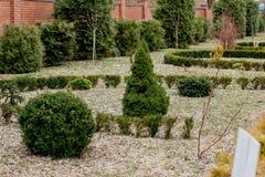 Panorama que ajardina natural en jardín Hermosa vista del jardín ajardinado en patio trasero Paisaje del área que ajardina adentr foto de archivo