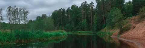 Quiet lake in the forest Royalty Free Stock Photography