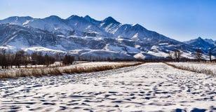 Panorama ranek w górach fotografia royalty free