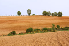 Panorama Recently Plowed Farmland Stock Images