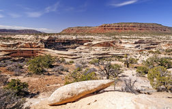 Panorama in Red Rocks Country Royalty Free Stock Images