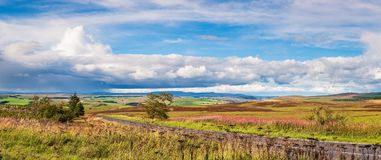 Panorama of Redesdale and Cheviot Hills Stock Photos