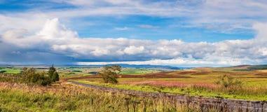 Panorama Redesdale i Szewiotowi wzgórza Zdjęcia Stock