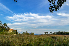 Panorama in the reeds. Reed bed in Italy, Verbania Lake Maggiore royalty free stock photography