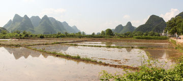 Panorama with rice field and green hills in Yangshuo Royalty Free Stock Photography