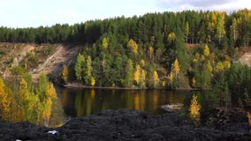 Panorama of river in forest in autumn stock video