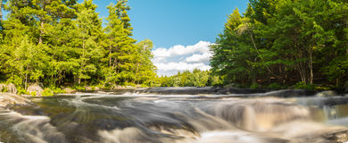 Panorama of a river in the forest Royalty Free Stock Photo