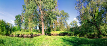 Panorama of the river with grass and trees on the shore Stock Images