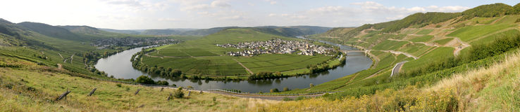 Panorama of the river Moselle in Germany. Panorama of the river Moselle in Trittenheim/ Germany Stock Images