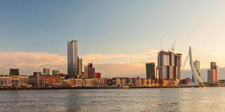 Panorama of the Rotterdam skyline Royalty Free Stock Photography