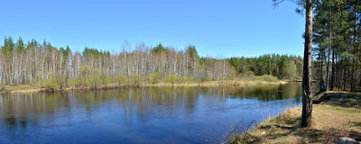 Panorama of the river in springtime. Royalty Free Stock Images