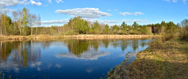 Panorama of the river in springtime. Stock Photography