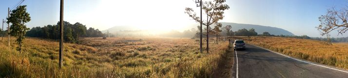 Panorama of a road trip at Khao Yai national park Stock Photography