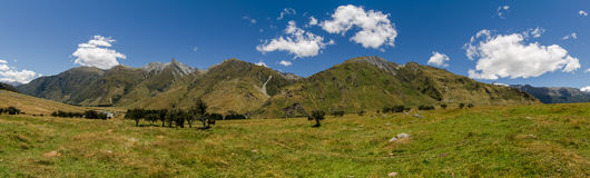 Panorama - Rob Roy Track, New Zealand. Meadow landscape panorama - Rob Roy Track, New Zealand Stock Images