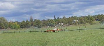 Panorama, rociadores automotores de la irrigación Fotografía de archivo
