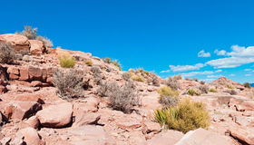Grand Canyon Surroundings Royalty Free Stock Photo