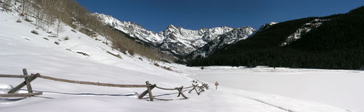 Panorama- Rocky Mountain Snow Covered Scenic Royaltyfri Fotografi