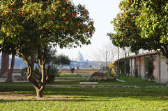 Panorama Roma Royalty Free Stock Images