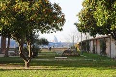 Panorama Rome Royalty-vrije Stock Afbeeldingen