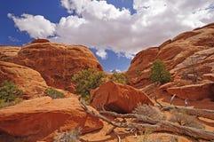 Panorama rosso del canyon della roccia Immagini Stock