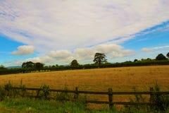 Panorama. Rural panorama with beautiful skies Stock Photos