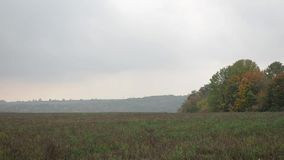 The panorama of the rural countryside stock footage