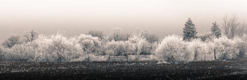 Panorama rural d'hiver Photographie stock
