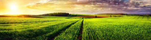 Panorama rural de la puesta del sol del paisaje Foto de archivo libre de regalías