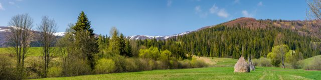 Panorama of rural field in mountains. Haystack on grassy field among the forest Stock Images