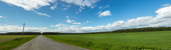 Panorama rural field in summer, Royalty Free Stock Images