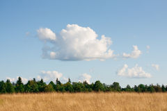 Panorama of the rural landscape. Royalty Free Stock Images