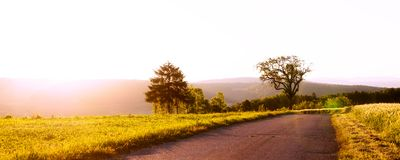 Rural panorama with sunrise. Panorama rural natural scene with a street between meadows at sunrise, trees at the left Royalty Free Stock Images