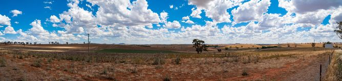 Panorama of rural paddock. Countryside, agriculture landscape Stock Images