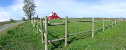 Panorama Rustic Barn and Fence. Rustic Vintage Red Barn Rail Fence and Huge Stark Tree in Panorama Stock Photos