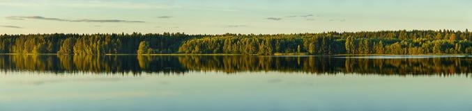 Panorama's van de rivier en het bos op de banken stock foto's