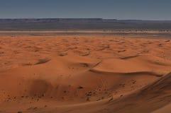 Panorama of Sahara desert Stock Photos