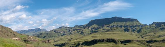 Panorama of the Sani Pass, mountain pass which connects South Africa to Lesotho. The Twelve Apostle mountain in Sisonke which overlooks The Sani Pass, the rural stock photo