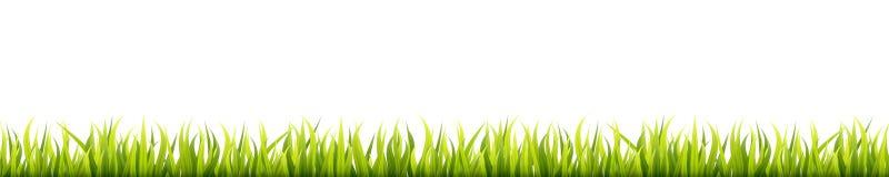 Panorama sans couture d'herbe d'été Pelouse de fines herbes de printemps vert Lignes horizontales de décoration de champ ou de pr illustration libre de droits